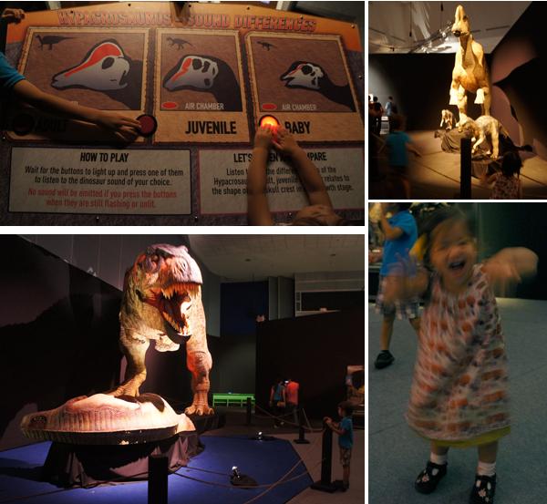 tyrannosaurus-t-rex-replica