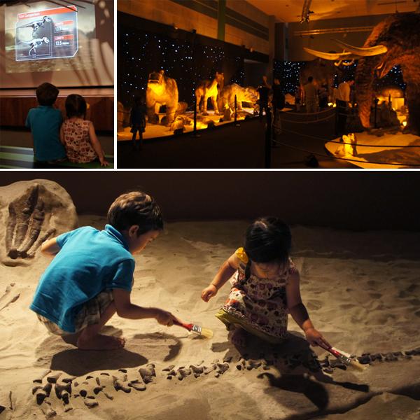 dinosaur-ice-age-mammal-forensic
