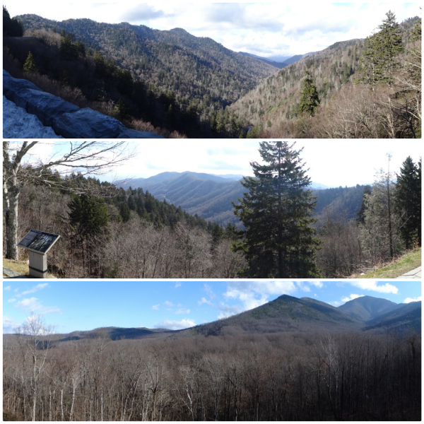 Panoramic views of the Smokies from various lookout points