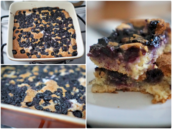 blueberry-cobbler-delicious-dessert