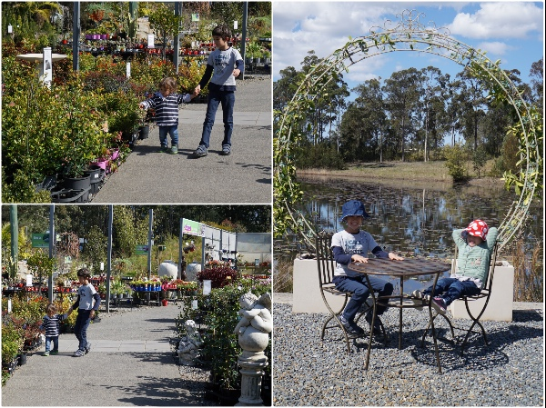 abundance-garden-centre-port-macquarie-cafe-walk